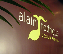 Alain Rodrigue